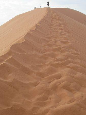 la dune par son arrête