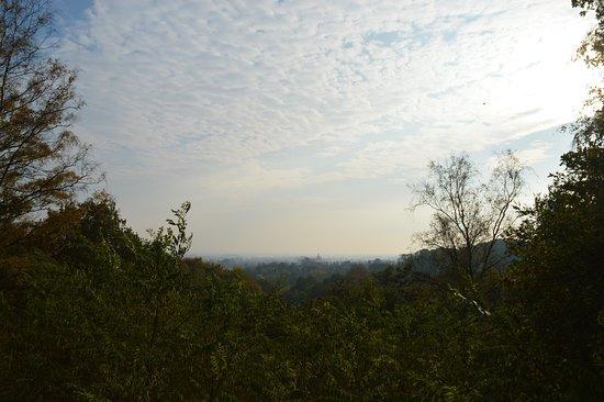 Naturschutzgebiet Dammer Bergsee
