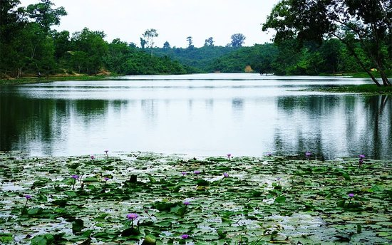 Official name of this lake is Madhabpur Lake. This lake situated near Sreemangal, BD. Local people named it  The Lake of Lotus. On the way to the Lake for miles and miles around you can take pictures as much as you like of the Tea Gardens like a green carpet on the sloping hills. A visit to the Tea Plantation would be a memorable experience. The water of the Lake is very cool & refreshing and the presents of the hills make the surroundings gorgeous. The Lake is full of rare blue and pink Lotus.