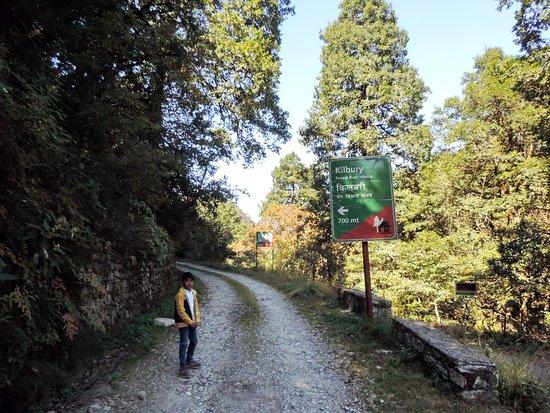 Pangot and Kilbury Bird Sanctuary: Way to Kilbury Forest Rest House