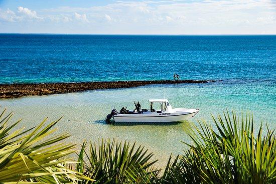 Our new boat La Dolce Vita
