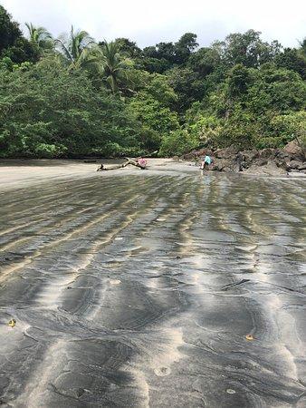 Isla Palenque: Beach hike