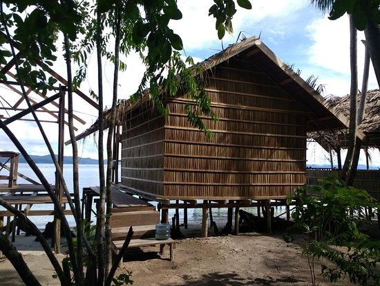 Raja Ampat Islands: Notre bungalow vu de derrière et juste à côté la preuve que ceux ci poussent non stop