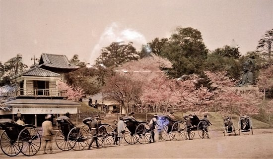 Toraya Kyoto Gallery