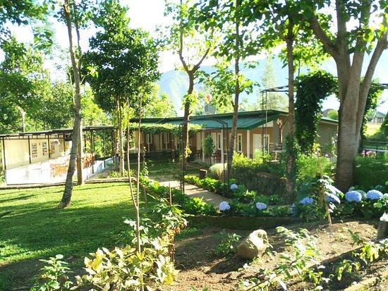 Rinjani Garden: Foreground