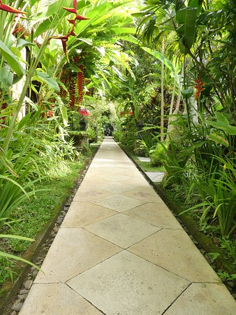 The Mansion Bali: allée luxuriante