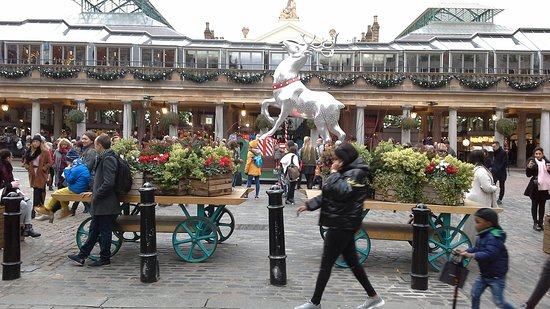 Approach to Covent Garden, with a huge stag