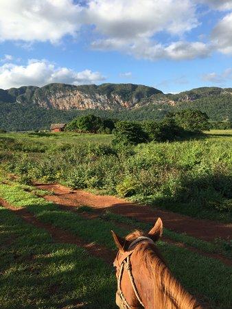 "Horseback Tour: Mein Pferd ""moro"""