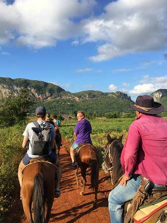 Horseback Tour: Unterwegs auf dem Rücken der Pferde