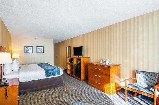 Comfort Inn Arlington Boulevard: King Guestroom