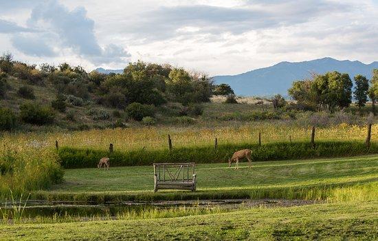 Blue Lake Ranch: Spring House