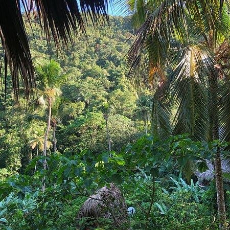 Adventure packed jungle luxury