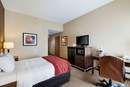 Edgewood, MD: Guest room with one bed