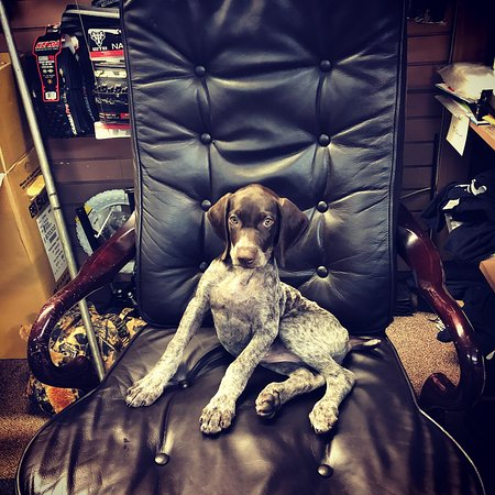 Baxley in her office