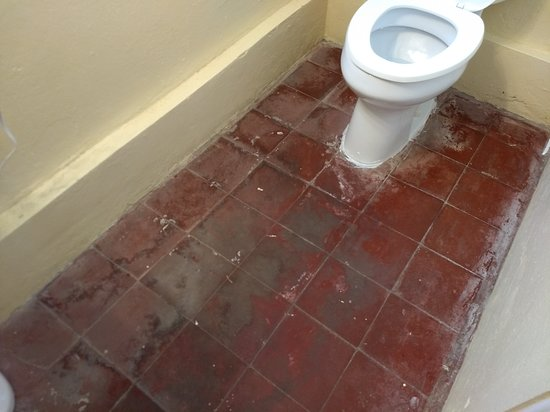 Club Comanche: Can you tell if the floor is clean?