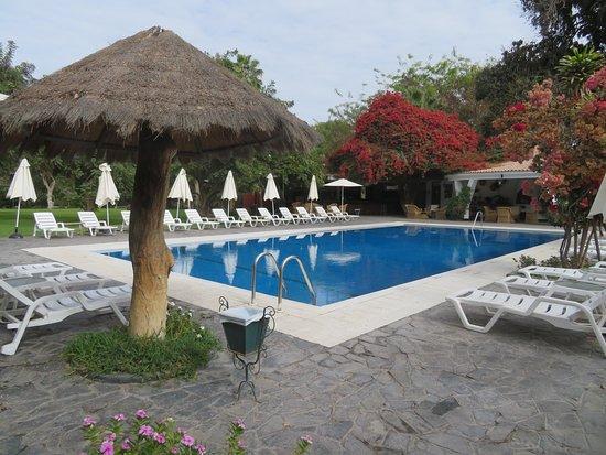 Mooi zwembad met de tuin op de achtergrond