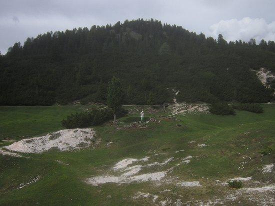 Rifugio Fodara Vedla: Palude sopra il rifugio Fodera Vedrla!