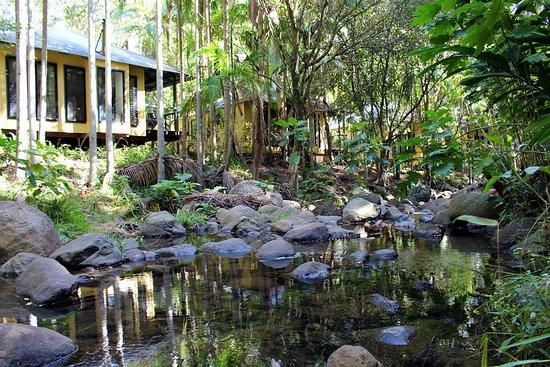 cedar creek lodges au 201 updated 2019 prices reviews rh tripadvisor com au