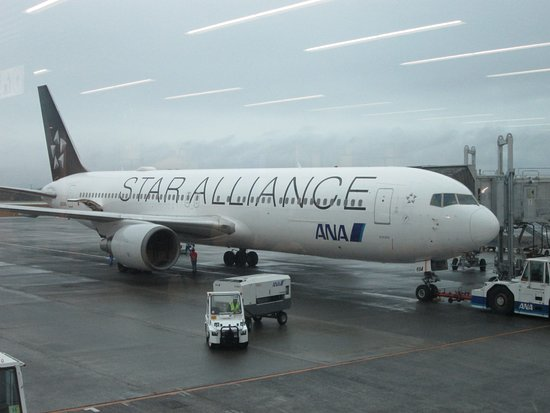 ANA: これは復路便(628便)です