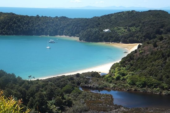 Full-Day Abel Tasman National Park...