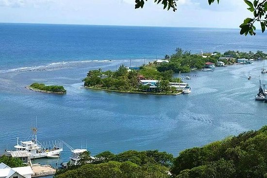 Roatan Private Tour: Shopping...