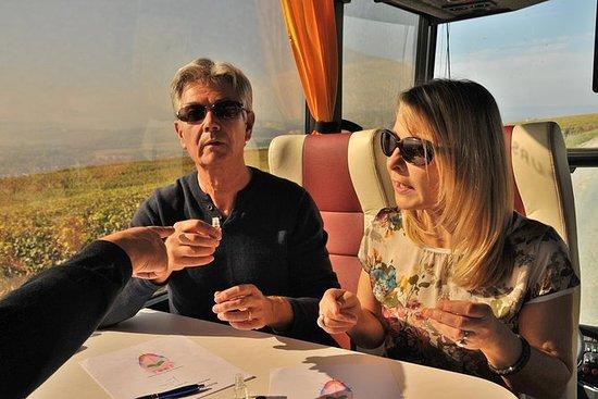 2-stündiger Ausflug mit Champagner...