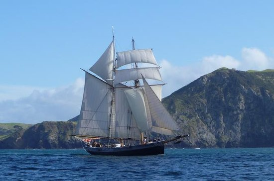 Bay of Islands Tall Ship Sailing on...