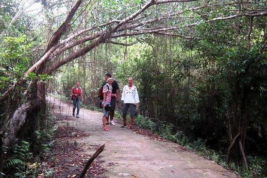Escursioni e Kayak in un Giorno a Lan Ha Bay e Viet