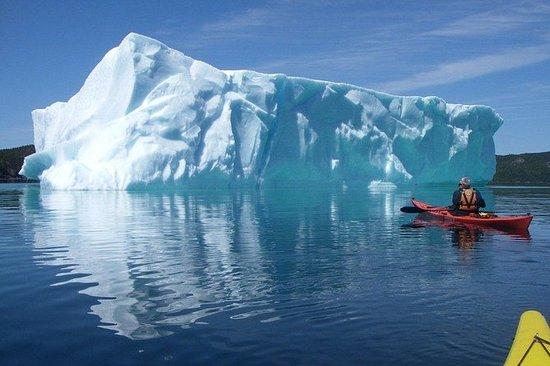 Tour Trinity Tow 'N' Go en kayak