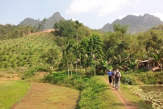 Hoa Binh and Muong Hill Tribe Day Trip...