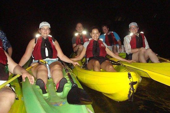 Aventura en kayak por la bahía...