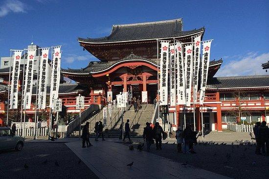 Private Full-day Nagoya City Tour