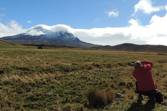 Volcan Antisana et Condors en visite...