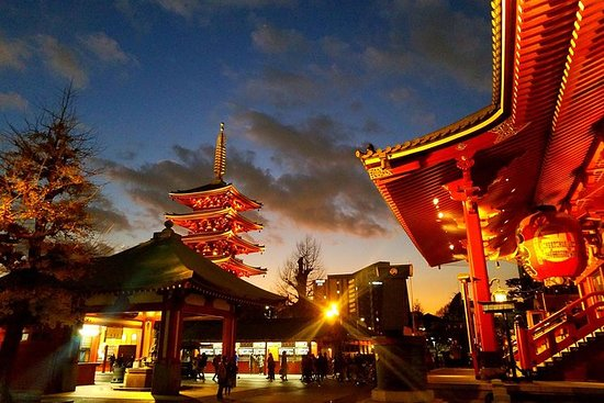 Private tour Tokyo - The Harmony of...