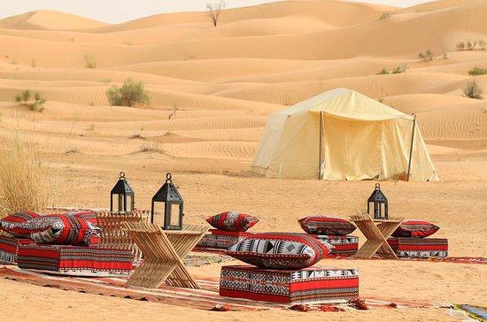 Safari dans le désert du Sahara avec...