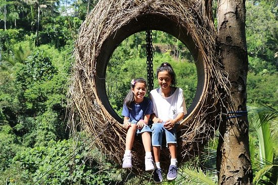 Ubud in One Day Sightseeing Tour ...