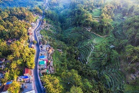 Fantastiska Bali Tour med 6 platser