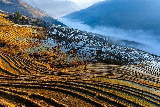 一日私人水稻梯田和少數民族村從龍脊到平安