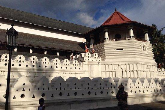 Tour privato di un giorno a Kandy e