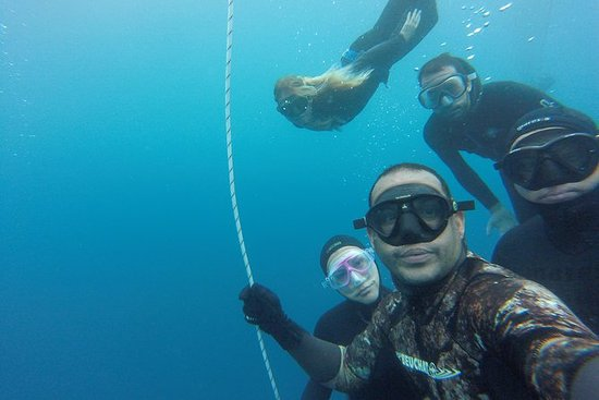 Full-Day Discover Freediving