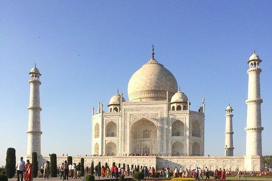 Taj Mahal Sunrise Private Tour fra...