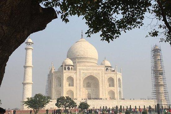 Private Taj Mahal Day Tour met ...