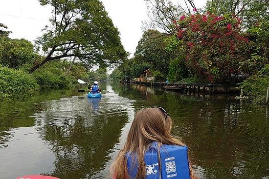 Kayaking Bangkok's Old Klongs (Morning)