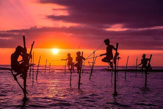 Galle Day Tour com Stilt Fishing...