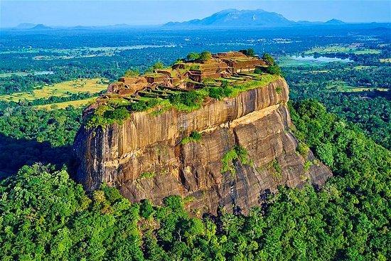 Sigiriya & Dambulla Tagesausflug von...