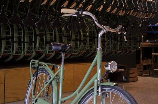 Visite guidée à vélo de Malaga