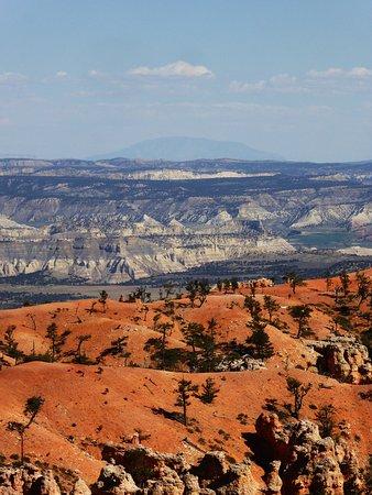 Navajo Mountain på avstånd