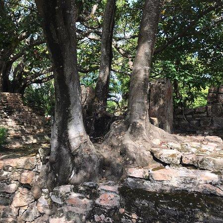 El Meco Ruins-bild