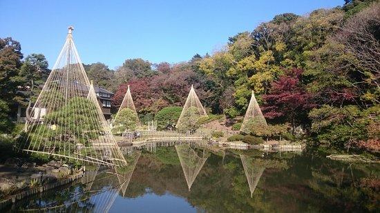 新江戶川公園