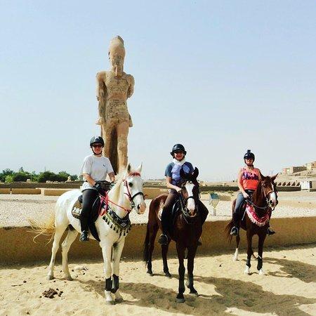 Ride Egypt: Horse riding tours in Egypt.